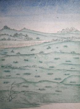 Landscape ariane mercier