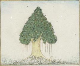 Peinture arbre ariane pour hb 2